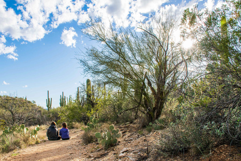 Photo of kids sitting on a hiking trail
